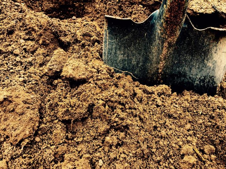 Rich-brown, Organic topsoil that is easy to shovel